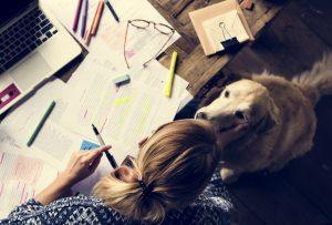 produttività nello studio